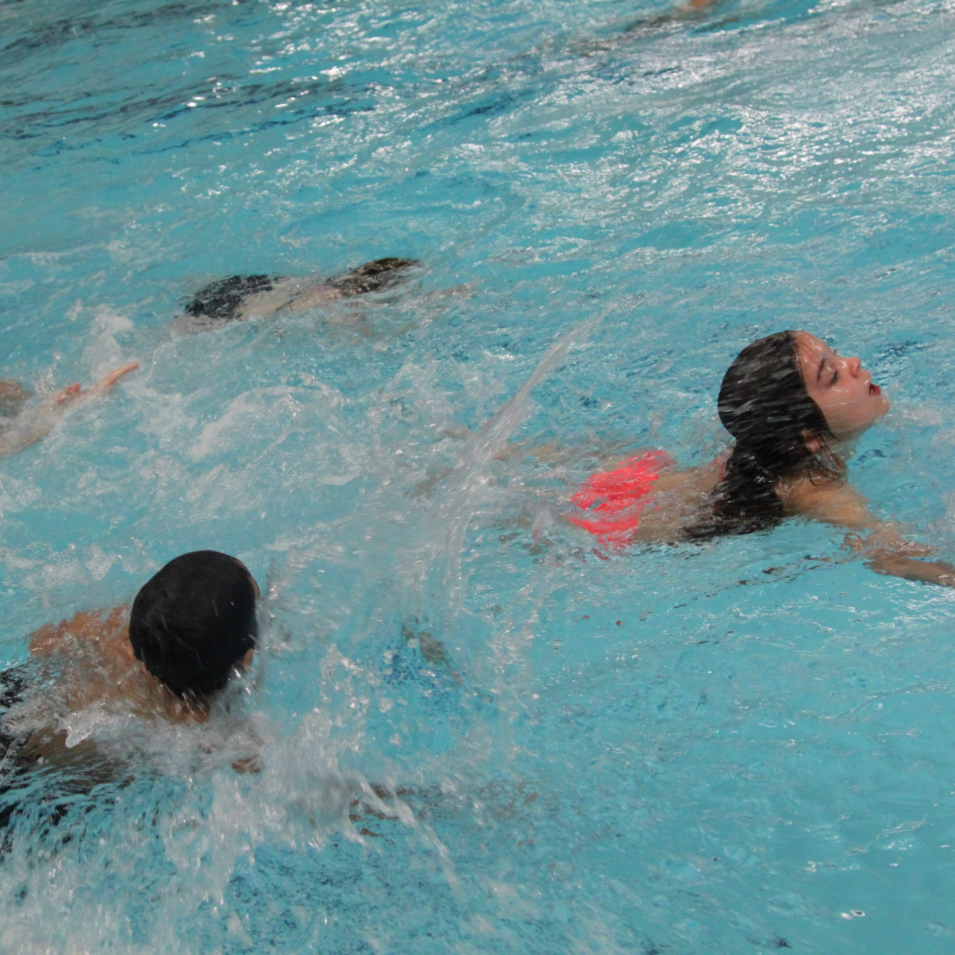 Bonte Wever Assen Zwemmen.Front Page De Watervrienden Assen